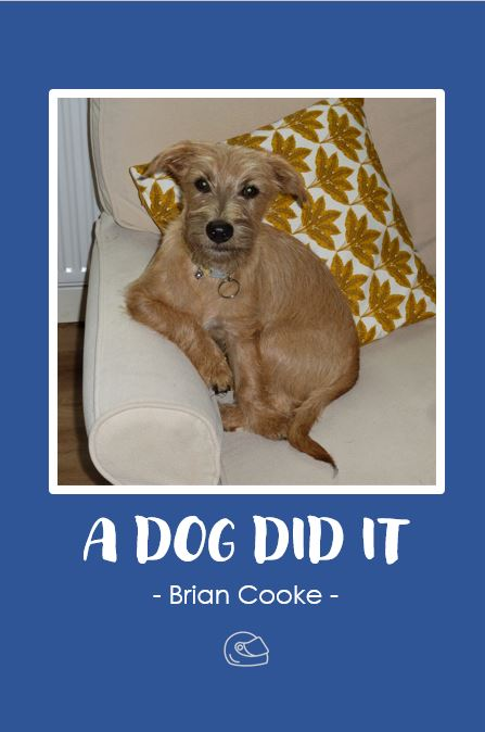 A Dog Did It by Brian Cooke 1